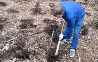 Zajištění pěstební činnosti