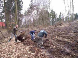Příprava na zalesňování